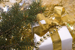 Gift. Green branch of fir tree and gift with golden ribbon Stock Image
