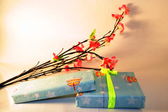 A gift. And flower on mixed lighting Royalty Free Stock Images