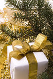 Gift. Box with golden ribbon and branch of fit Royalty Free Stock Photography