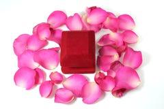 Gift ans rose on white for Valentine. Image Stock Photo