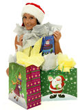Gift bags Royalty Free Stock Images