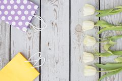 Gift bags, tulips, place for text. ?olored bags and flowers. Spring greeting card Royalty Free Stock Photos