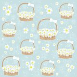 Gift basket with Flowers seamless background Royalty Free Stock Photography