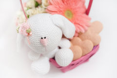Gift Basket Royalty Free Stock Images
