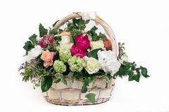Gift basket of flowers whith roses peonies hydrangea isolated. Basket of flowers - roses peonies hydrangea on white background Stock Photo