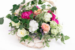 Gift basket of flowers whith roses peonies hydrangea isolated. Basket of flowers - roses peonies hydrangea on white background Royalty Free Stock Photo