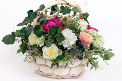Gift basket of flowers whith roses peonies hydrangea isolated. Basket of flowers - roses peonies hydrangea on white background Royalty Free Stock Photos