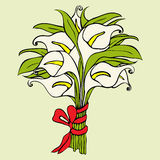 Gift bouquet of calla lilies.  Vector illustration Royalty Free Stock Photography