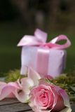 Gift with bow and pink rose Royalty Free Stock Photos