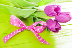 Gift bow with tulips Stock Photos