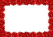 Gift Bows Border Stock Photo