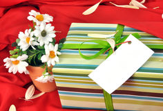 Gift box. Holiday gift box background with colorful decorative flowers Royalty Free Stock Photos