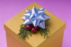 Gift box. With ribbon and Christmas ornaments Stock Photo