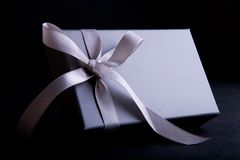 Gift Box. Silver gift box wrapped with satin ribbon royalty free stock image