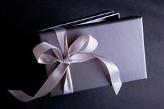 Gift Box. Silver gift box wrapped with satin ribbon royalty free stock photo