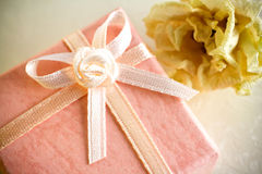 Gift box. Stock Photography