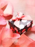 Gift box with bow and petals Stock Photography