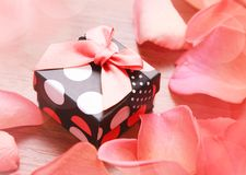 Gift box with bow and petals Royalty Free Stock Photography