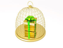 Gift box in the cage Stock Images