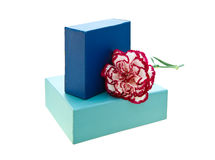 Gift box with carnation Stock Photography