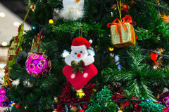 Gift box and chrismas tree Stock Images