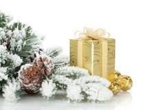 Gift box, christmas decor and snowy fir tree Stock Image