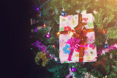 Gift. Box on christmas tree stock image