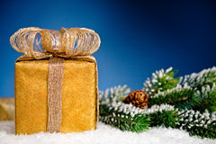 Gift box and Christmas tree branch in snow Royalty Free Stock Image