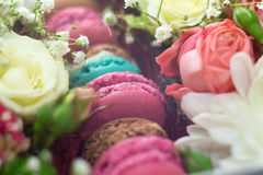 Gift Box of Colourful Macaron with Flowers. Natural light, Bloom Box Stock Photo