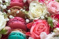 Gift Box of Colourful Macaron with Flowers. Natural light, Bloom Box Royalty Free Stock Image