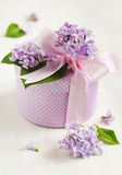 Gift box decorated with purple lilac and ribbons Royalty Free Stock Photos