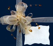 Gift box with decorative ribbon Stock Images