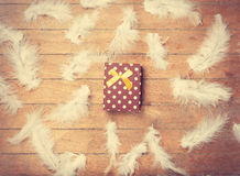 Gift box and feathers Stock Image