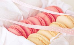 Gift in a box: French macaroon Royalty Free Stock Photos