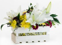 Gift box with fresh lily flowers and chrysanthemum isolated on w. Hite background stock images