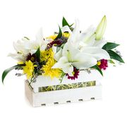 Gift box with fresh lily flowers and chrysanthemum isolated on w. Hite background stock photos