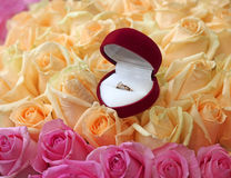 Gift box with gold ring on beautiful roses background Stock Photography