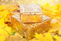 Gift box in gold wrapping paper with autumn leaves Stock Image