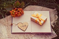 Gift box with golden ribbon, heart and an open book on the green grass. Autumn concept. Autumn gifts. Royalty Free Stock Images