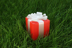 Gift box on a grass royalty free stock photography