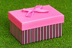 Gift box on grass Royalty Free Stock Images