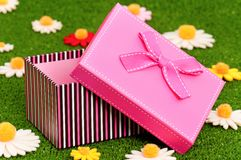 Gift box on grass Stock Photo