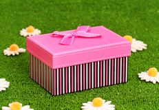 Gift box on grass Royalty Free Stock Photos