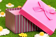 Gift box on grass Stock Photography