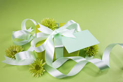 Gift box on green background Royalty Free Stock Photos