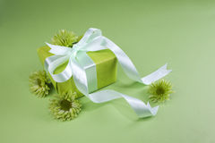 Gift box on green background Royalty Free Stock Images