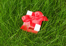 Gift box on green grass Stock Photography