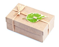 Gift box with green leaf Royalty Free Stock Photography