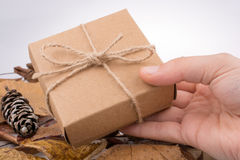 Gift box with in hand and pine cone. Hand holding a gift box and pine cone Royalty Free Stock Photography