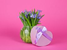 Gift box heart with ribbon and vase Stock Photo